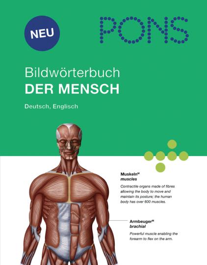 PONS Bildwörterbuch der Mensch.