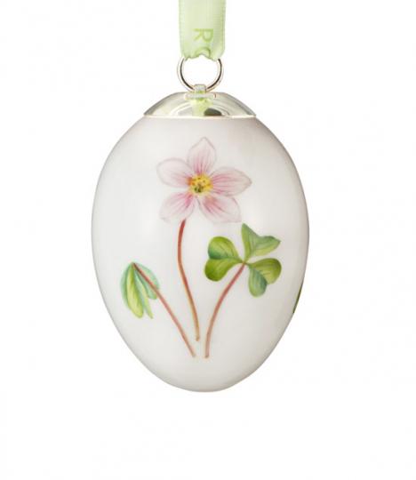 Porzellanei »Blume Sauerklee«.