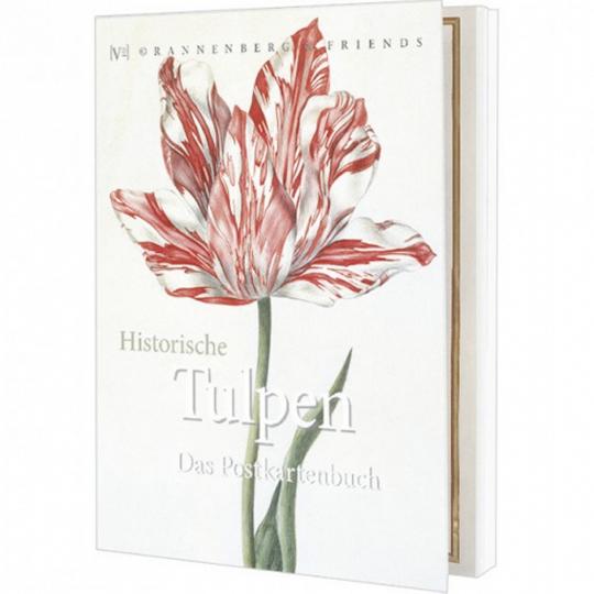 Postkartenbuch Historische Tulpen