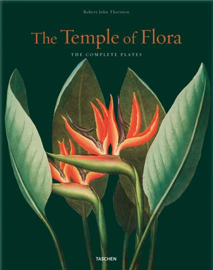 Robert John Thornton. The Temple of Flora.