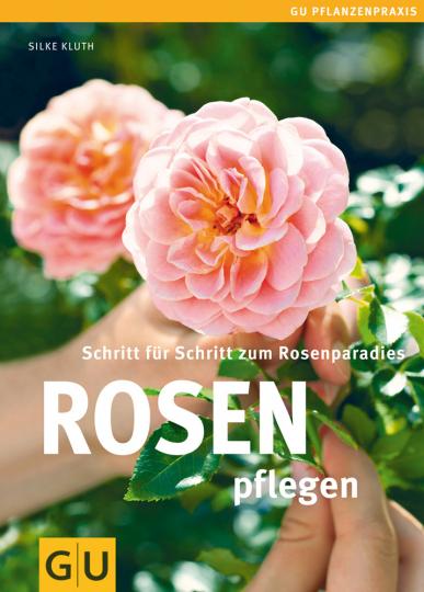 Rosen pflegen - Schritt für Schritt zum Rosenparadies