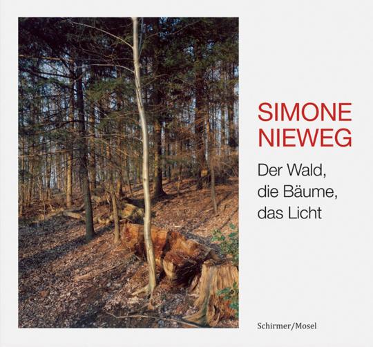 Simone Nieweg. Der Wald, die Bäume, das Licht.