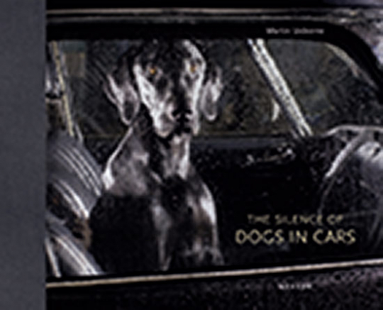 The Silence of Dogs in Cars. Tierportraits.