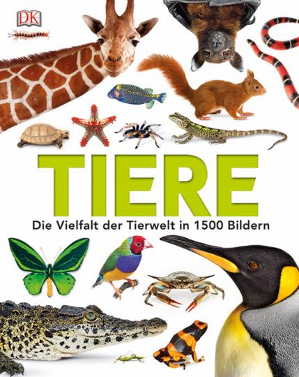 Tiere. Die Vielfalt der Tierwelt in 1500 Bildern.