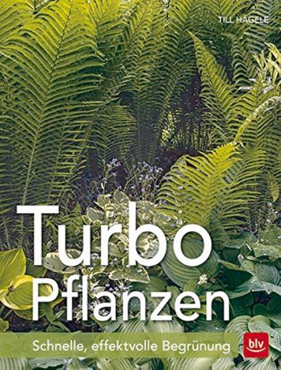 Turbo-Pflanzen - Schnelle, effektvolle Begrünung