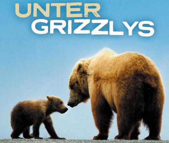 Unter Grizzlys DVD