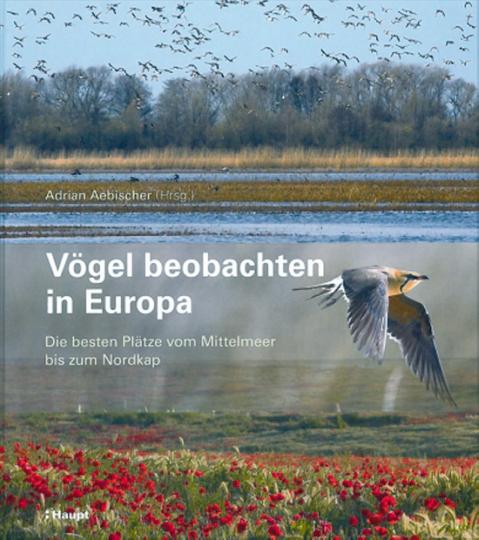 Vögel beobachten in Europa