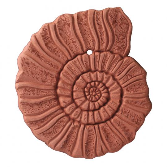 Wandfliese Terracotta »Ammonit«.