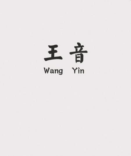 Wang Yin. Werke 1990-2006.