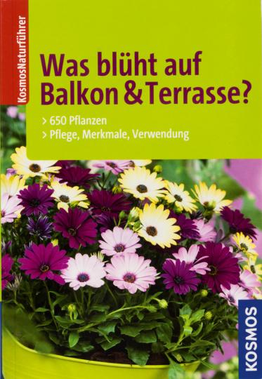 Was blüht auf Balkon & Terrasse? 650 Pflanzen, Pflege, Merkmale, Verwendung.