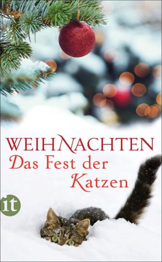 Weihnachten. Das Fest der Katzen.