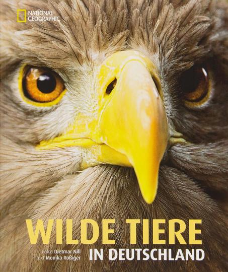 Wilde Tiere in Deutschland.