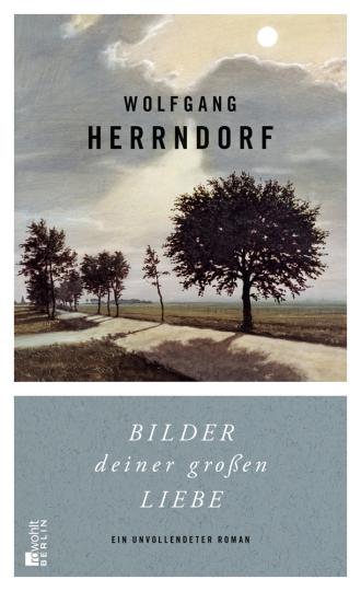 Wolfgang Herrndorf. Bilder deiner großen Liebe. Ein unvollendeter Roman.