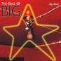 Big Star. The Best Of Big Star. CD. Bild 1