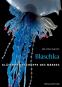 Blaschka. Gläserne Geschöpfe des Meeres Bild 1