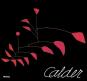 Calder. Sculptor of Air. Bild 1