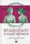 Der weibliche Busen in Kunst und Natur. Reprint aus dem Hugo Bermühler Verlag, Berlin. Bild 1