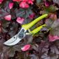 Leuchtende Gartenschere, neongelb. Bild 1