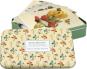 Grußkartenbox »Maria Sibylla Merian«. Bild 1