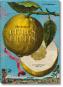 J. C. Volkamer. The Book of Citrus Fruits. Zitrusfrüchte. Bild 1