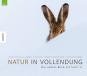 Natur in Vollendung. Der andere Blick auf Südtirol. Bild 1