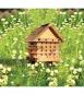 Nisthilfe für Bienen. Bild 1
