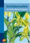 Orchideentafeln - Aus Curtis's Botanical Magazine Bild 1