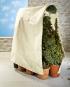 Pflanzenschutz-Vlies. Bild 1