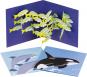 Pop-up-Grußkarten-Set »Das Meer«. Bild 1