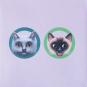 Pop-up-Grußkarte »Zwei Katzen am Näpfchen«. Bild 1