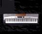 Stagepiano E-Piano SP5100. Bild 1