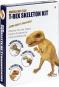 T-Rex Skelett. Modelliermasse. Bild 1