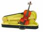 Violine mit Bogen und Koffer Bild 1