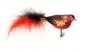 Vogel rot schwarz mit roter und schwarzer Feder. Bild 1