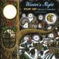Winter's Night. Pop-Up Adventskalender. Bild 1