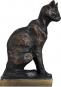 Abessinische Katze von Théophile Alexandre Steinlen. Bild 2