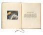 Albtraum und Befreiung. Max Ernst in der Sammlung Würth. Bild 2