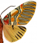 Bild »Anaxita sannionis« Nachtfalter. Hochformat. Bild 2