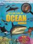 Creature Close-Up Ocean Animals. Bild 2