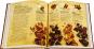 Das Schokoladenbuch. Von der Bohne bis zur Tafel. Bild 2
