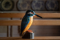 Deko-Vogel Eisvogel. Bild 2