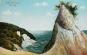 Die Kreideküste Rügens. Historische Ansichten auf Postkarten. Bild 2