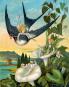 Die Märchen von Hans Christian Andersen. Bild 2