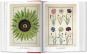 Ein Garten Eden - Meisterwerke der botanischen Illustration. Bild 2
