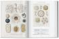 Ernst Haeckel. Kunst und Wissenschaft. Bild 2