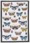 Geschirrtücher Schmetterlinge, 2er Set. Bild 2