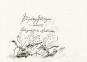 Günter Grass. Eintagsfliegen. Gelegentliche Gedichte. Bild 2