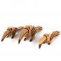 Holzvogel Tukan. Bild 2