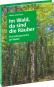 Im Wald, da sind die Räuber. Eine Kulturgeschichte des Waldes. Bild 2