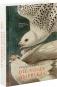 John James Audubon. Die Vögel Amerikas. Bild 2